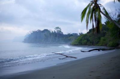Yoga Retreats in Costa Rica- Blue Osa