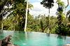 infinity pool jungle view