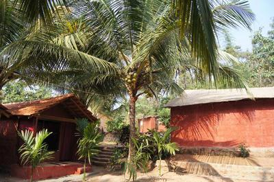 Trimurti Yoga Retreat Goa- the grounds