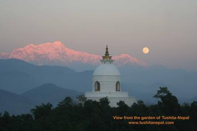 World Peace Stupa from our garden